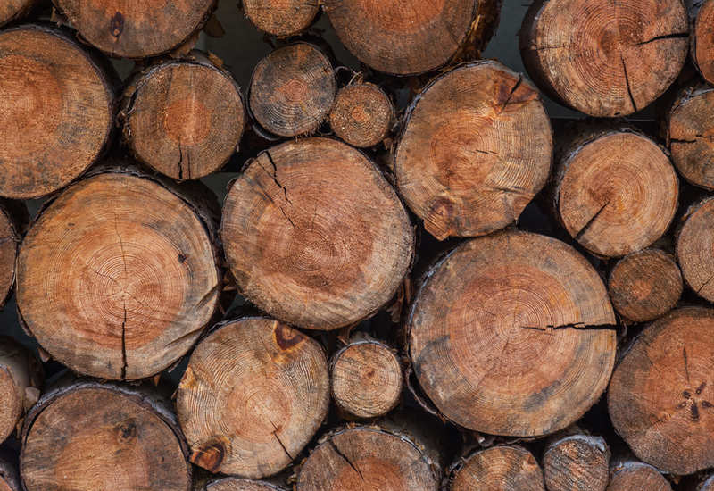 wood is a popular material for furnishing